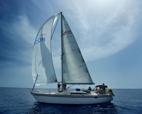Caldera Full Day Private Sailing Cruise